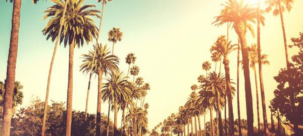 california 15 Gründe warum Sie California besuchen müssen! los angeles 600x270